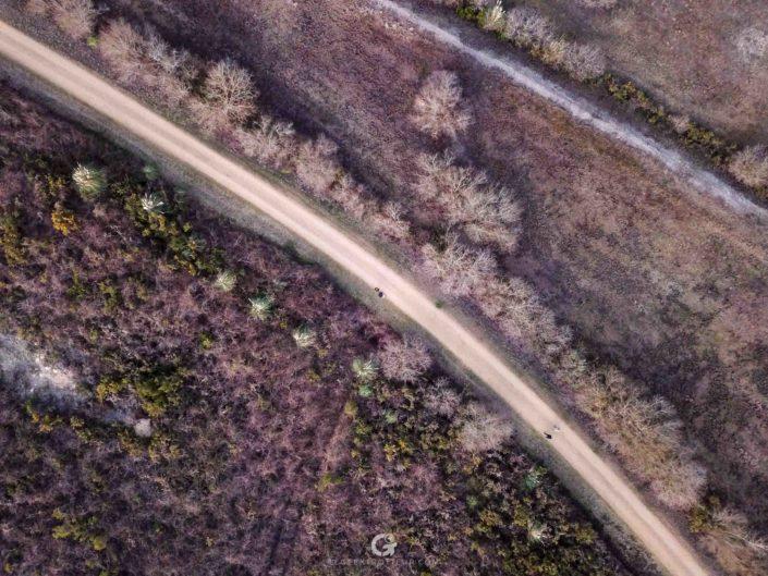 Vue aérienne du sentier autour du lac d'Arjuzanx