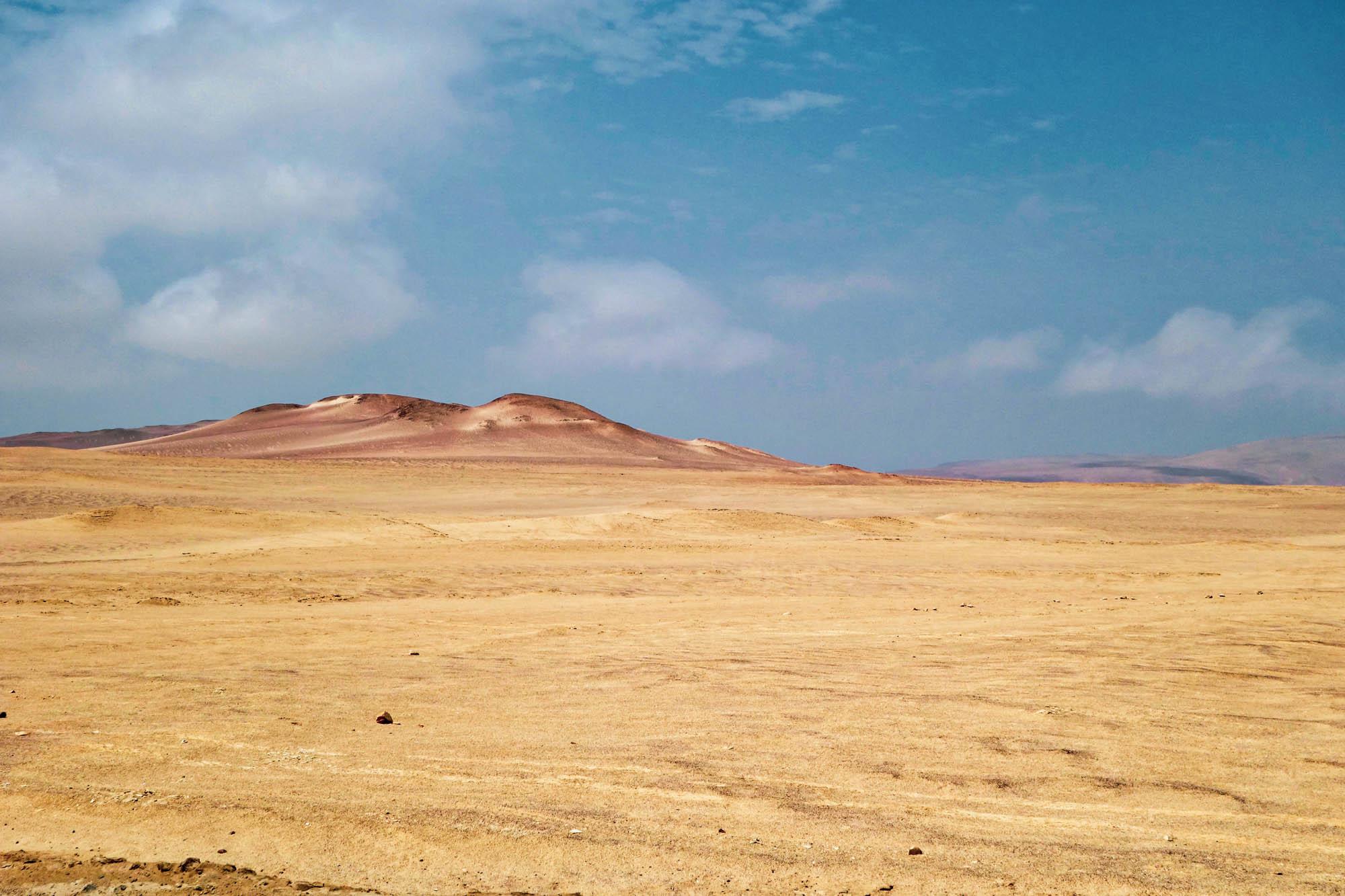 La réserve de Paracas au Pérou